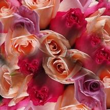 Ithaca Wedding Photography Flowers2